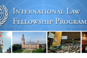 UN International Law Fellowship Programme